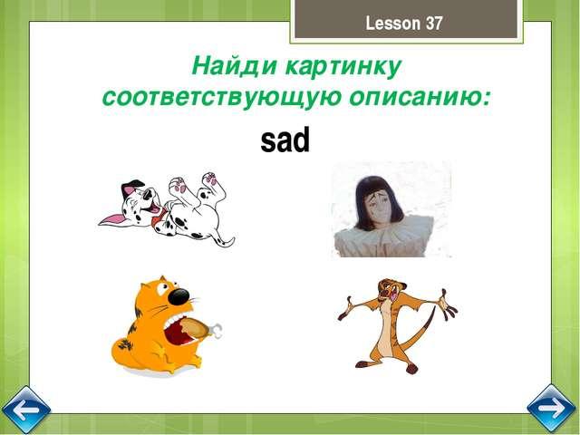 Выбери картинку по описанию. Остальные опиши сам. cat's hat Lesson 41