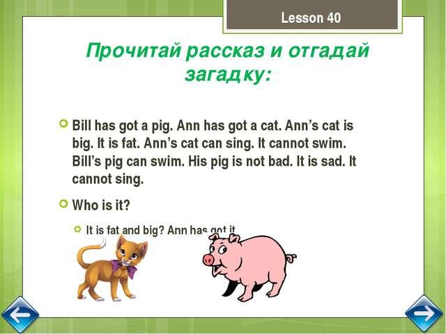pig's stick Lesson 41