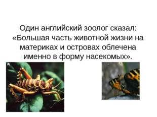 Один английский зоолог сказал: «Большая часть животной жизни на материках и