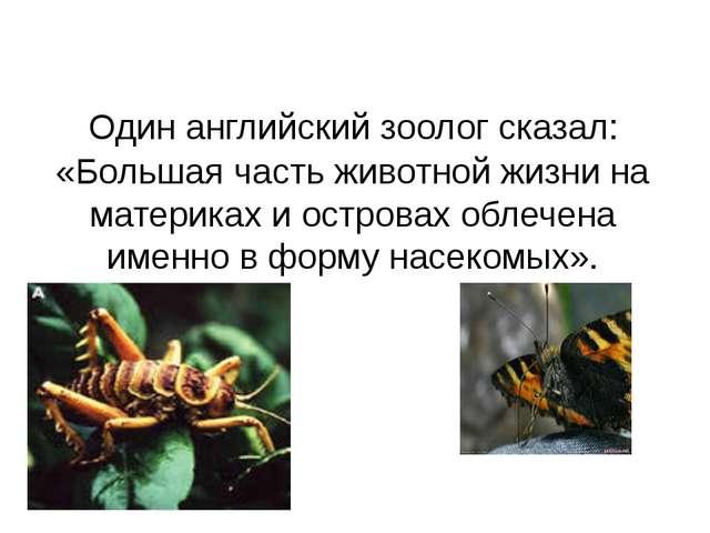 Один английский зоолог сказал: «Большая часть животной жизни на материках и...