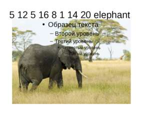 5 12 5 16 8 1 14 20 elephant