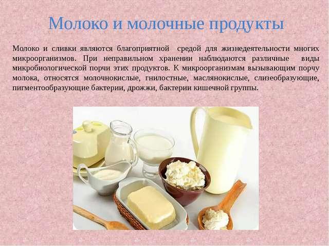 Молоко и молочные продукты Молоко и сливки являются благоприятной средой для...