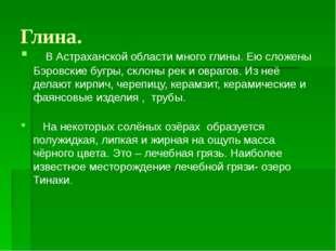 Глина. В Астраханской области много глины. Ею сложены Бэровские бугры, склоны
