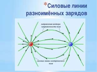 Силовые линии разноимённых зарядов