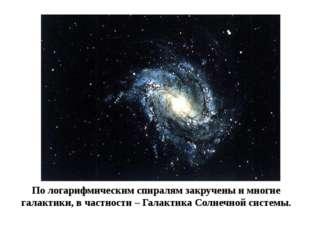 По логарифмическим спиралям закручены и многие галактики, в частности – Галак