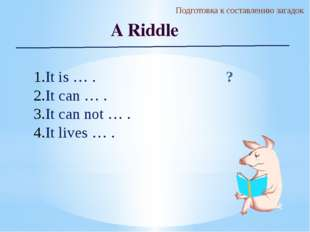 Подготовка к составлению загадок A Riddle It is … . It can … . It can not … .