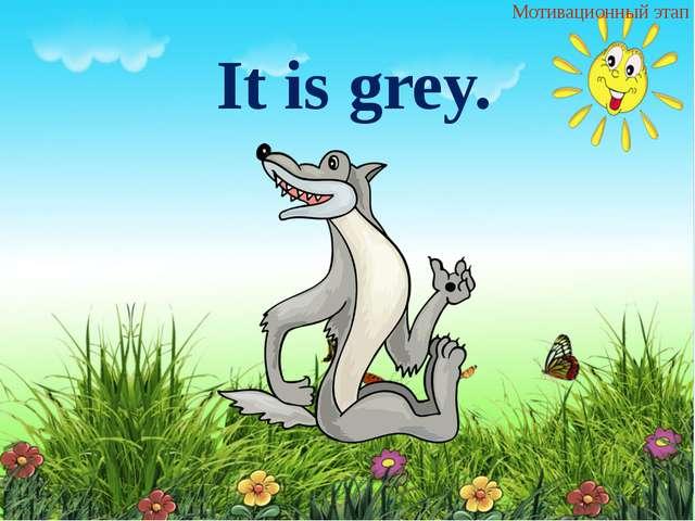 It is grey. Мотивационный этап