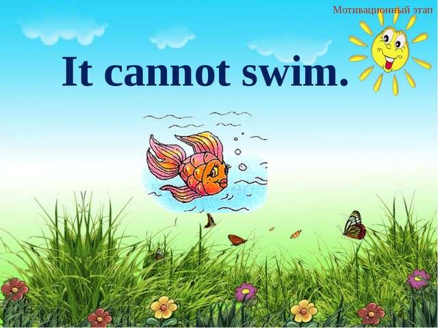 Мотивационный этап It cannot swim.