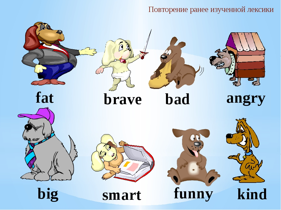 Повторение ранее изученной лексики fat brave bad angry big smart funny kind