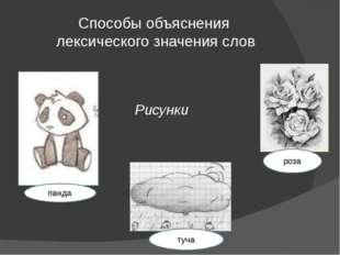 Способы объяснения лексического значения слов Рисунки панда роза туча
