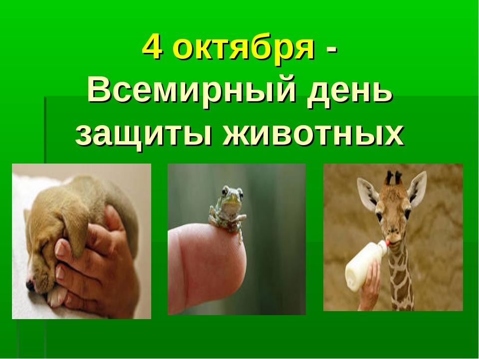 Картинки саратов, картинки к дню защиты животных