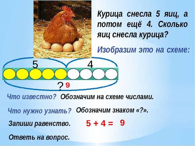 Курица снесла 5 яиц, а потом ещё 4. Сколько яиц снесла курица? Изобразим это...