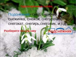 Однокоренные слова Подснежник- снег, снежный, снежинка, снежок, снегурочка, с