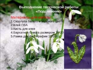 Выполнение творческой работы «Подснежник» Материалы для работы : Скорлупа бел