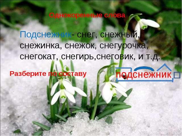 Однокоренные слова Подснежник- снег, снежный, снежинка, снежок, снегурочка, с...