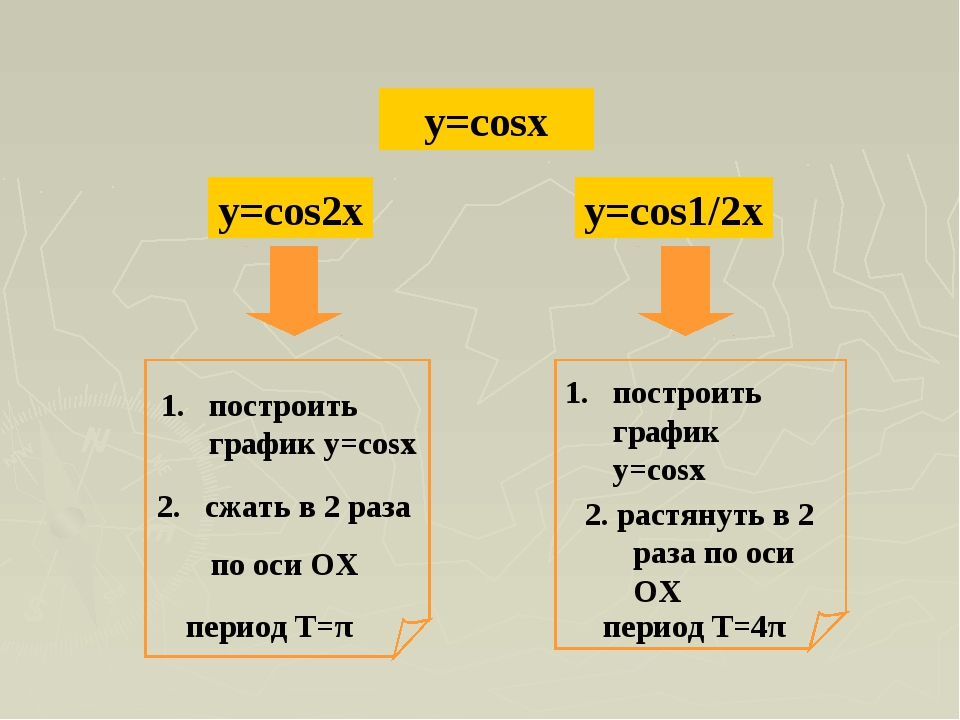 y=cosx y=cos2x y=cos1/2x
