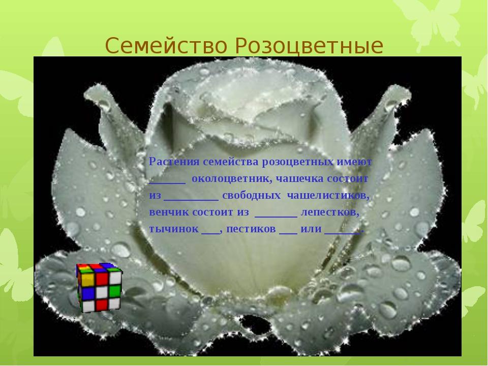 Семейство Розоцветные Растения семейства розоцветных имеют ______ околоцветни...