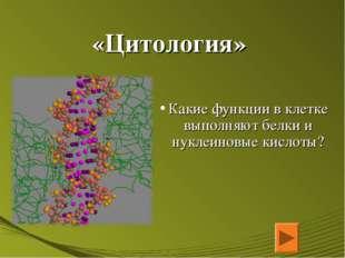 «Цитология» Какие функции в клетке выполняют белки и нуклеиновые кислоты?