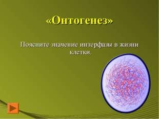 «Онтогенез» Поясните значение интерфазы в жизни клетки.