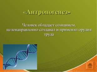 «Антропогенез» Человек обладает сознанием, целенаправленно создавал и применя