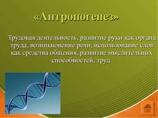 «Антропогенез» Трудовая деятельность, развитие руки как органа труда, возникн