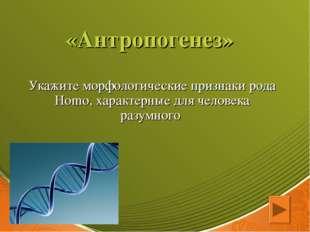 «Антропогенез» Укажите морфологические признаки рода Homo, характерные для че