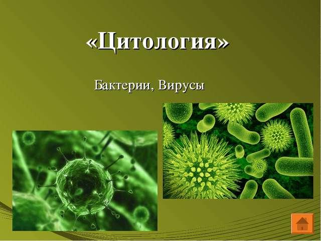 «Цитология» Бактерии, Вирусы