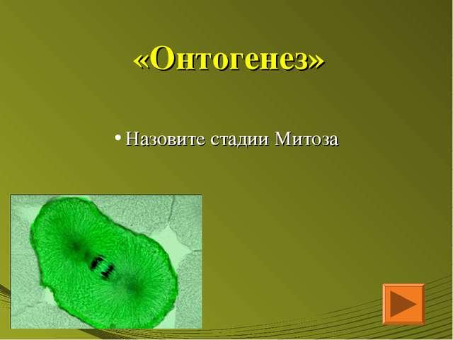 «Онтогенез» Назовите стадии Митоза