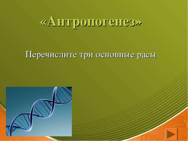 «Антропогенез» Перечислите три основные расы