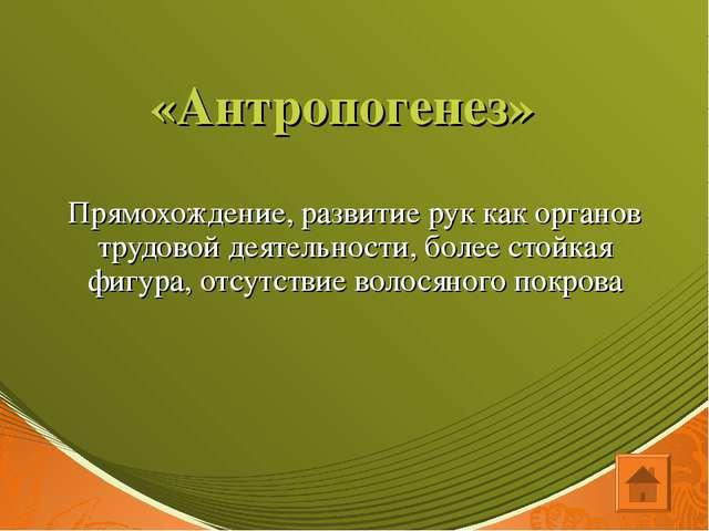 «Антропогенез» Прямохождение, развитие рук как органов трудовой деятельности,...