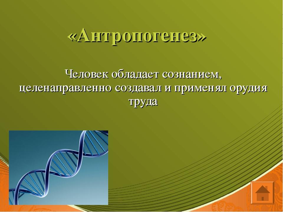 «Антропогенез» Человек обладает сознанием, целенаправленно создавал и применя...