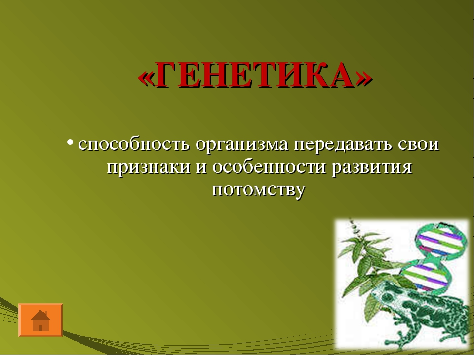 «ГЕНЕТИКА» способность организма передавать свои признаки и особенности разви...