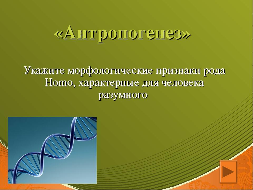 «Антропогенез» Укажите морфологические признаки рода Homo, характерные для че...