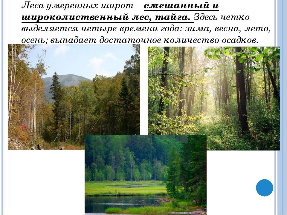 В широколиственных лесах увеличивается число копытных: олени, лоси, косули....