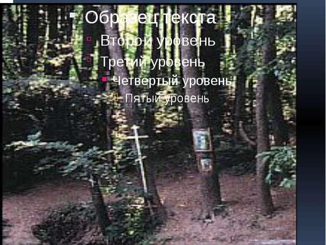 Серафимов источник поселка Сатис