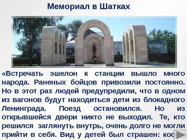 Большая семья Савичевых, в которой Таня была самой младшей, жила на Васильевс...