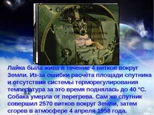 Лайка была жива в течение 4 витков вокруг Земли. Из-за ошибки расчёта площад