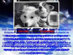 Эксперименты по запуску ракет с собаками продолжились только через два года,