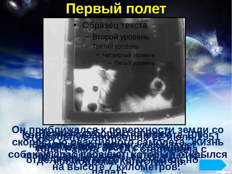 Первый полет В первый экспериментальный полет отправили двух собак: Цыгана и...