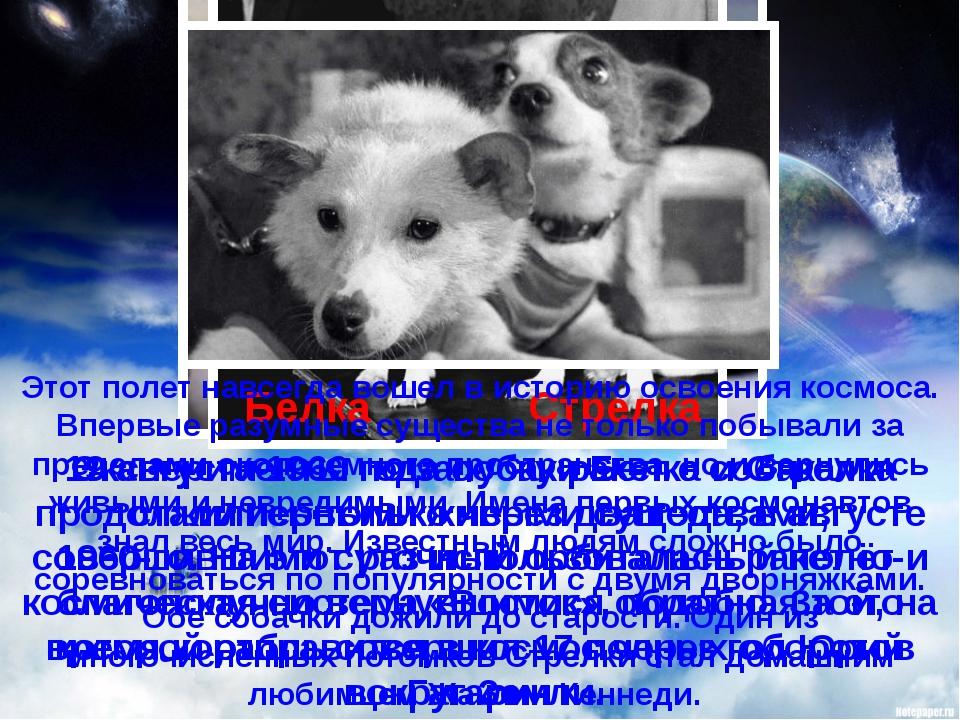 Эксперименты по запуску ракет с собаками продолжились только через два года,...