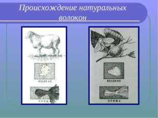 Происхождение натуральных волокон