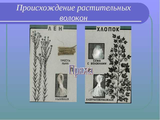 Происхождение растительных волокон