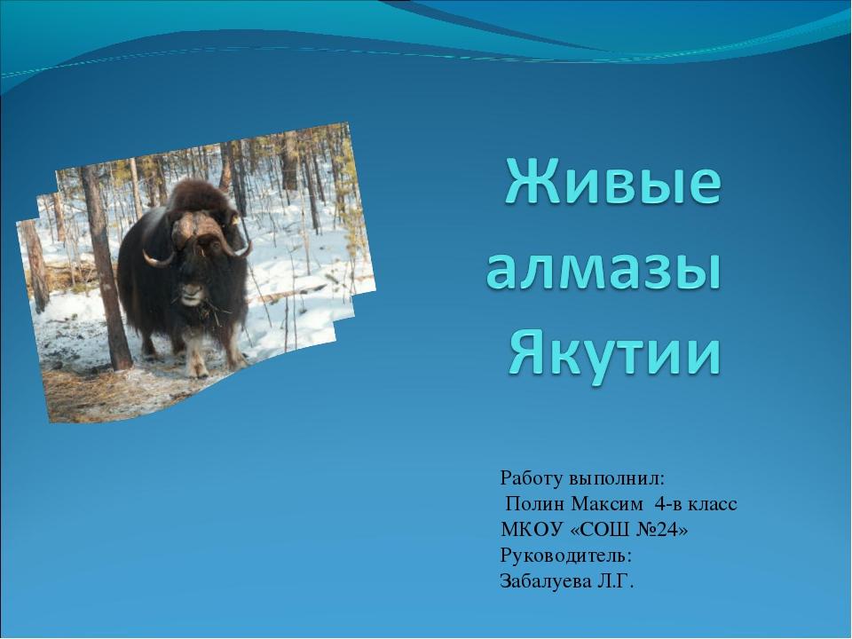 Работу выполнил: Полин Максим 4-в класс МКОУ «СОШ №24» Руководитель: Забалуев...