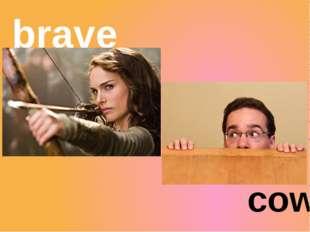 coward brave