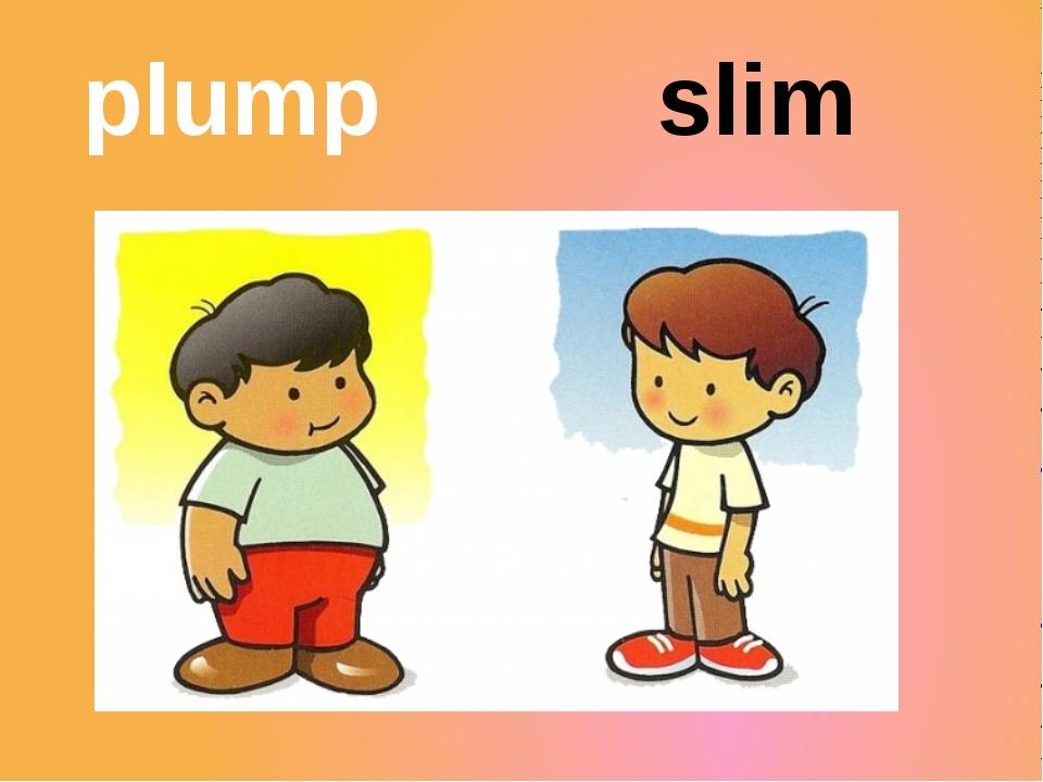 plump slim