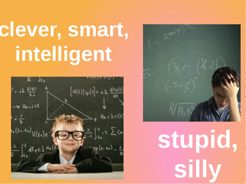 clever, smart, intelligent stupid, silly