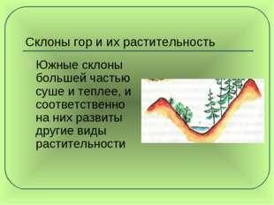Склоны гор и их растительность Южные склоны большей частью суше и теплее, и с