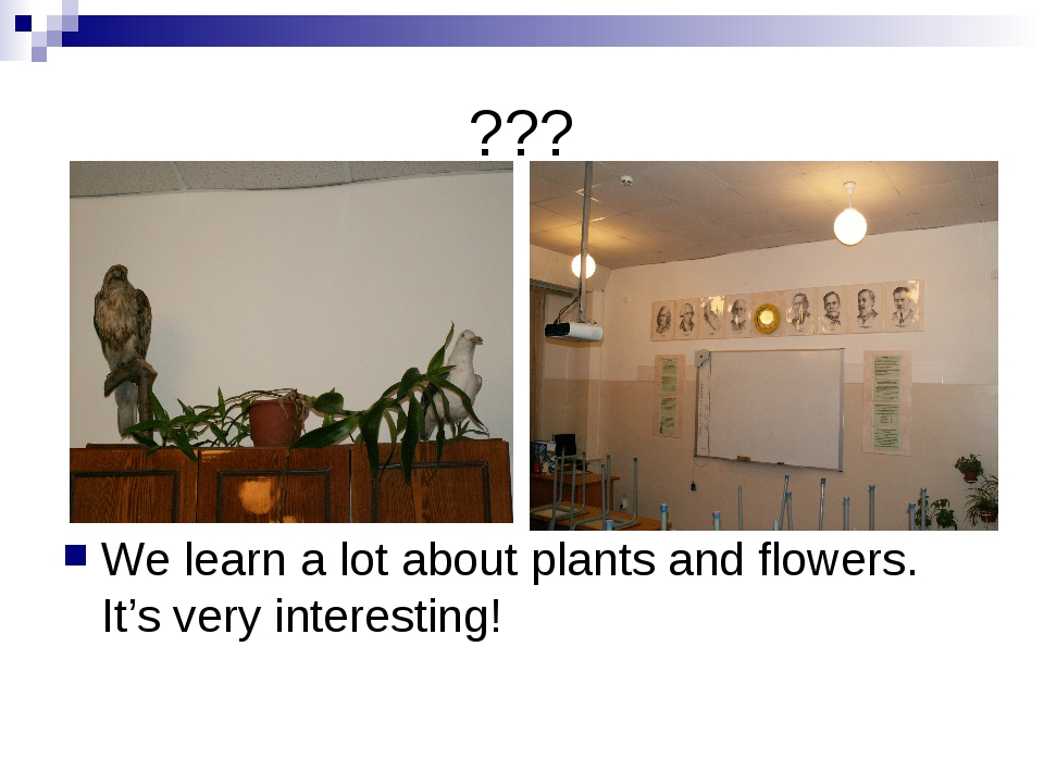 ??? We learn a lot about plants and flowers. It's very interesting!