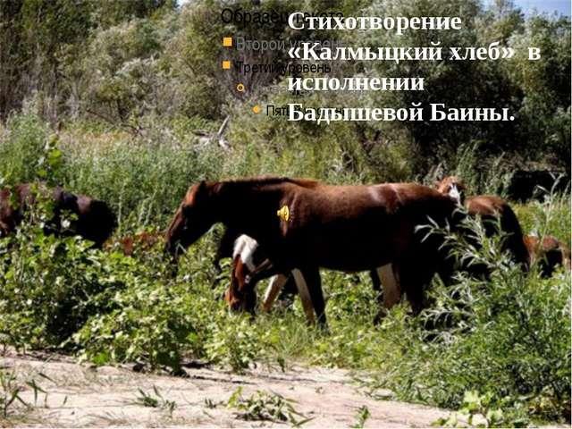 Стихотворение «Калмыцкий хлеб» в исполнении Бадышевой Баины.