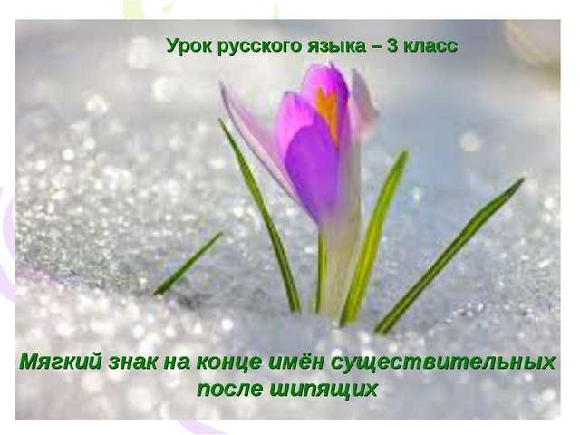 Урок русского языка – 3 класс Мягкий знак на конце имён существительных после...